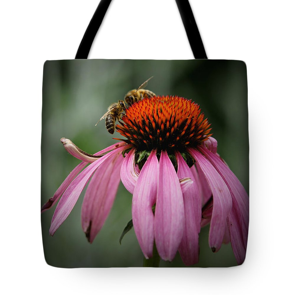 Cone Flowers Tote Bag featuring the photograph Let The Battle Begin by Ernie Echols