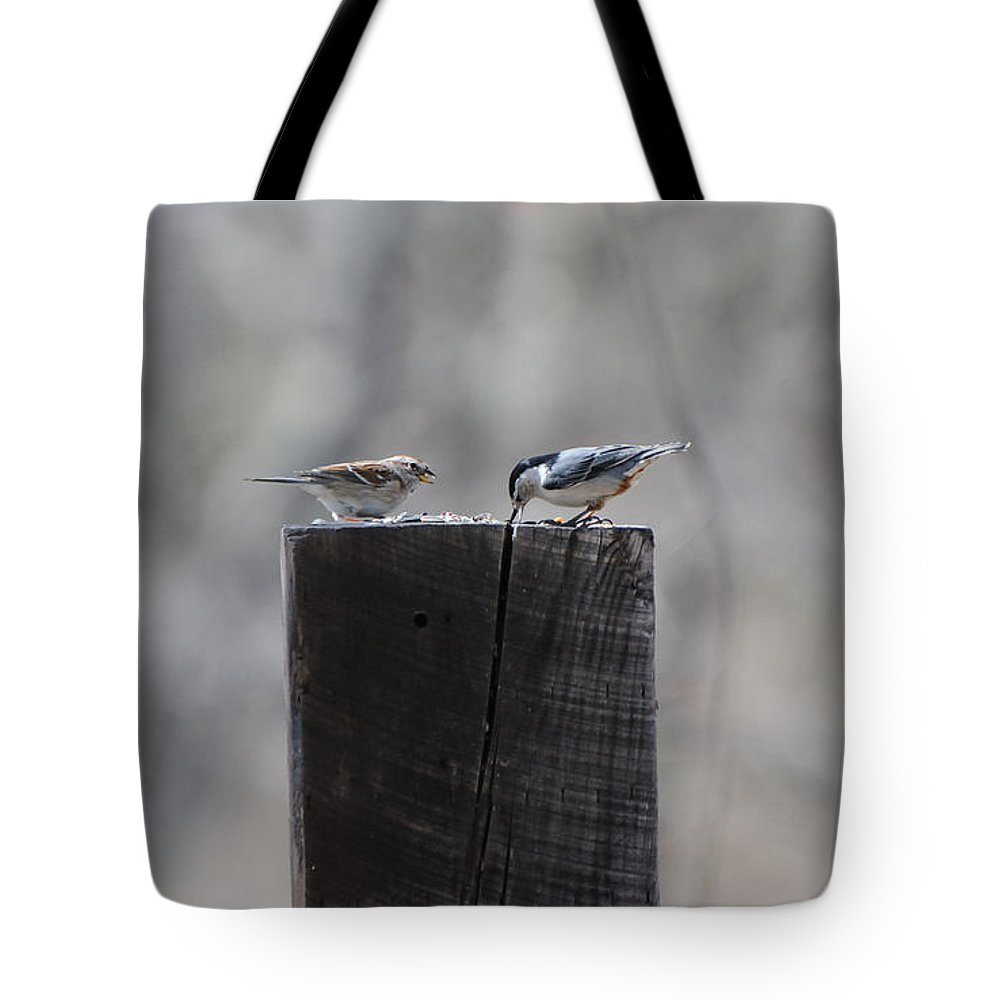 Birds Tote Bag featuring the photograph Let's Eat by Scott Angus