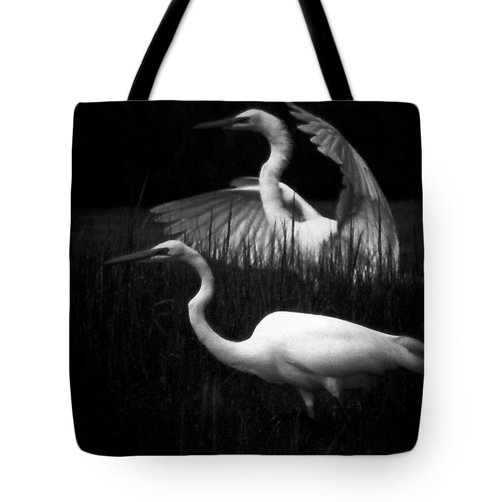 Birds Tote Bag featuring the photograph Let's Just Wing It by Robert McCubbin