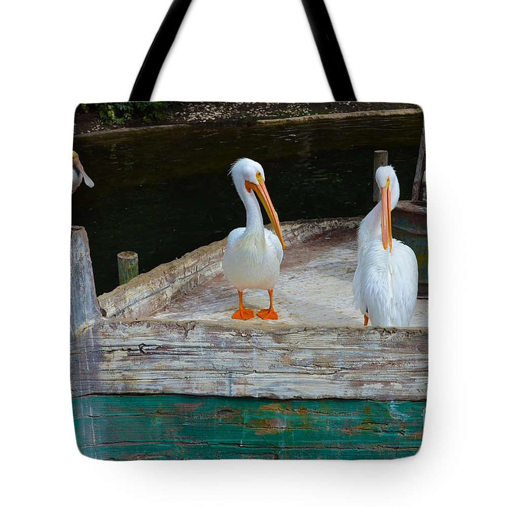 Pelicans Tote Bag featuring the photograph Let's Set Sail by Hilton Barlow