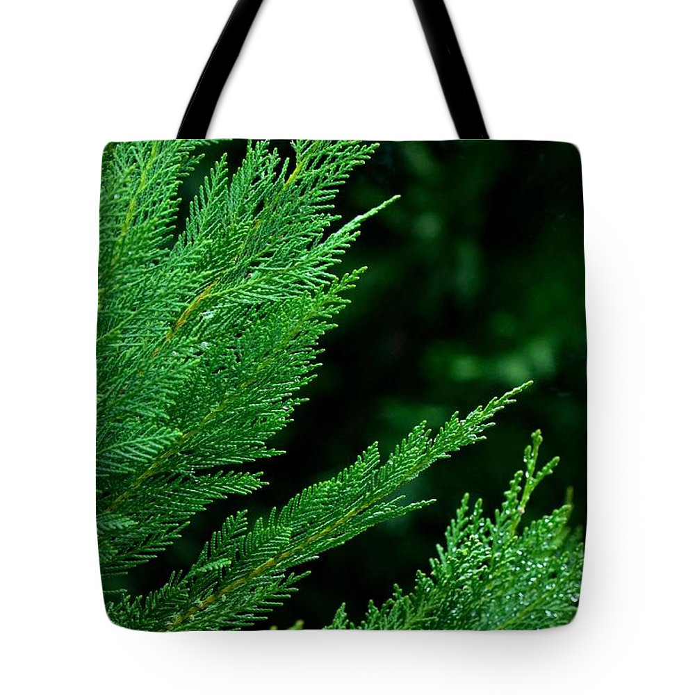 Leyland Cypress Green Tote Bag featuring the photograph Leyland Cypress Green by Maria Urso