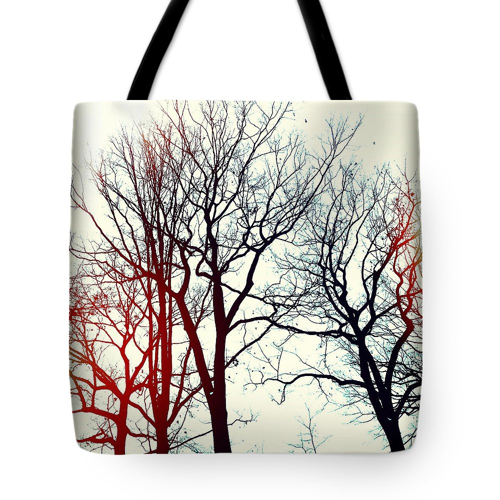 Trees Tote Bag featuring the photograph L'hiver by Natasha Marco