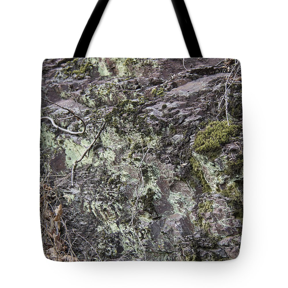 Lichen Tote Bag featuring the photograph Lichen And Moss by Teresa Mucha