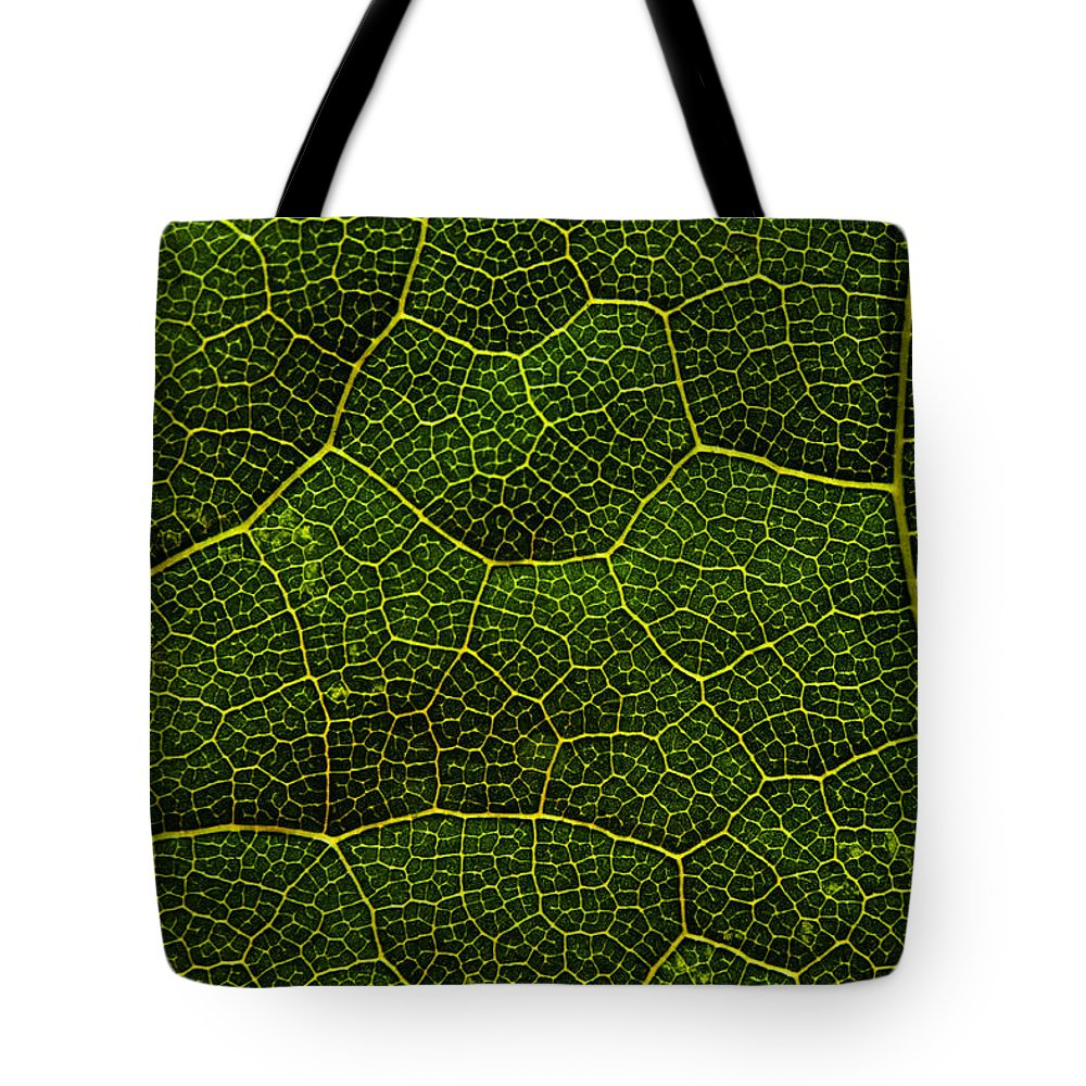 Life Grid Tote Bag featuring the photograph Life Grid In A Leaf by Cristina-Velina Ion