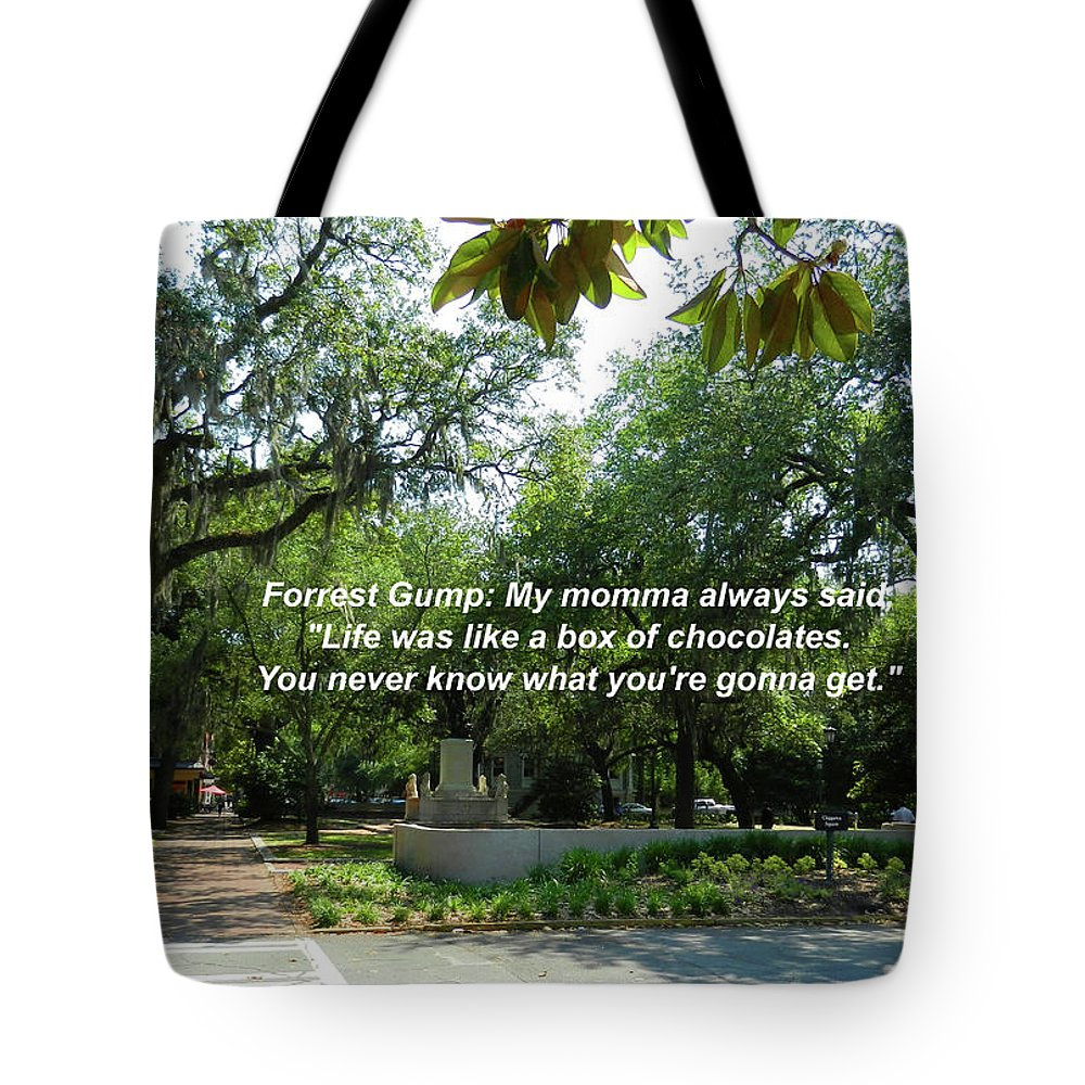 Bench Tote Bag featuring the photograph Life Is Like A Box Of Chocolates by Paul Mashburn