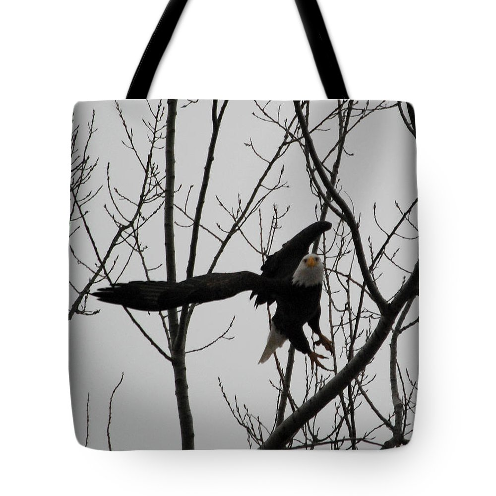 Wildlife Tote Bag featuring the photograph Liftoff by Pamela Peters