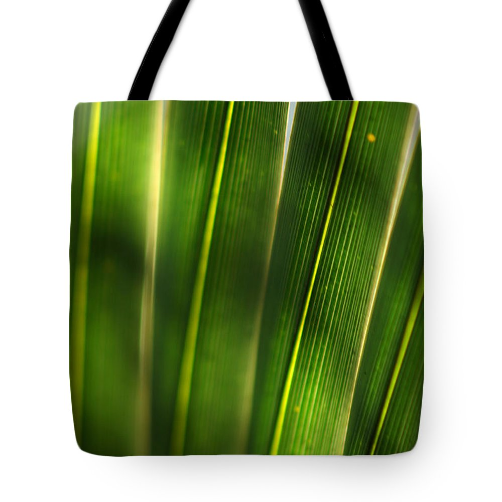 Silver Springs Tote Bag featuring the photograph Light Filter by Allan Lovell