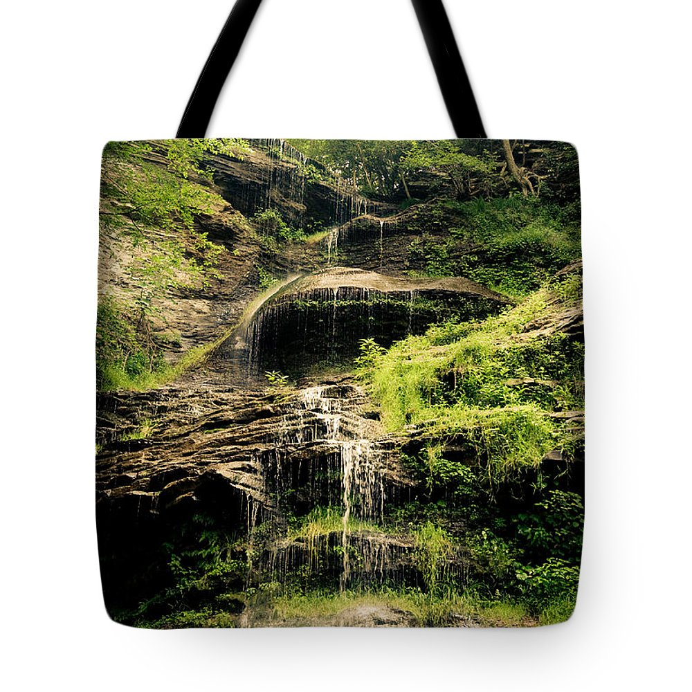 Catherdal Falls Tote Bag featuring the photograph light flow at Cathedral Falls by Shane Holsclaw