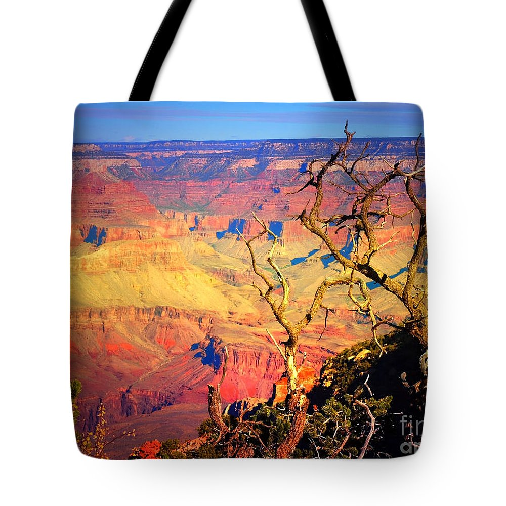 Tree Tote Bag featuring the photograph Light In The Canyon by Tara Turner