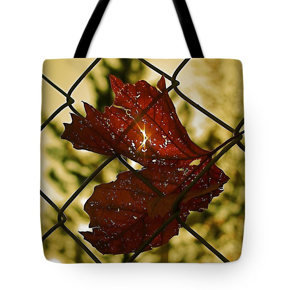 Dried Leaf Tote Bag featuring the photograph Light Leaf Links by Rona Black
