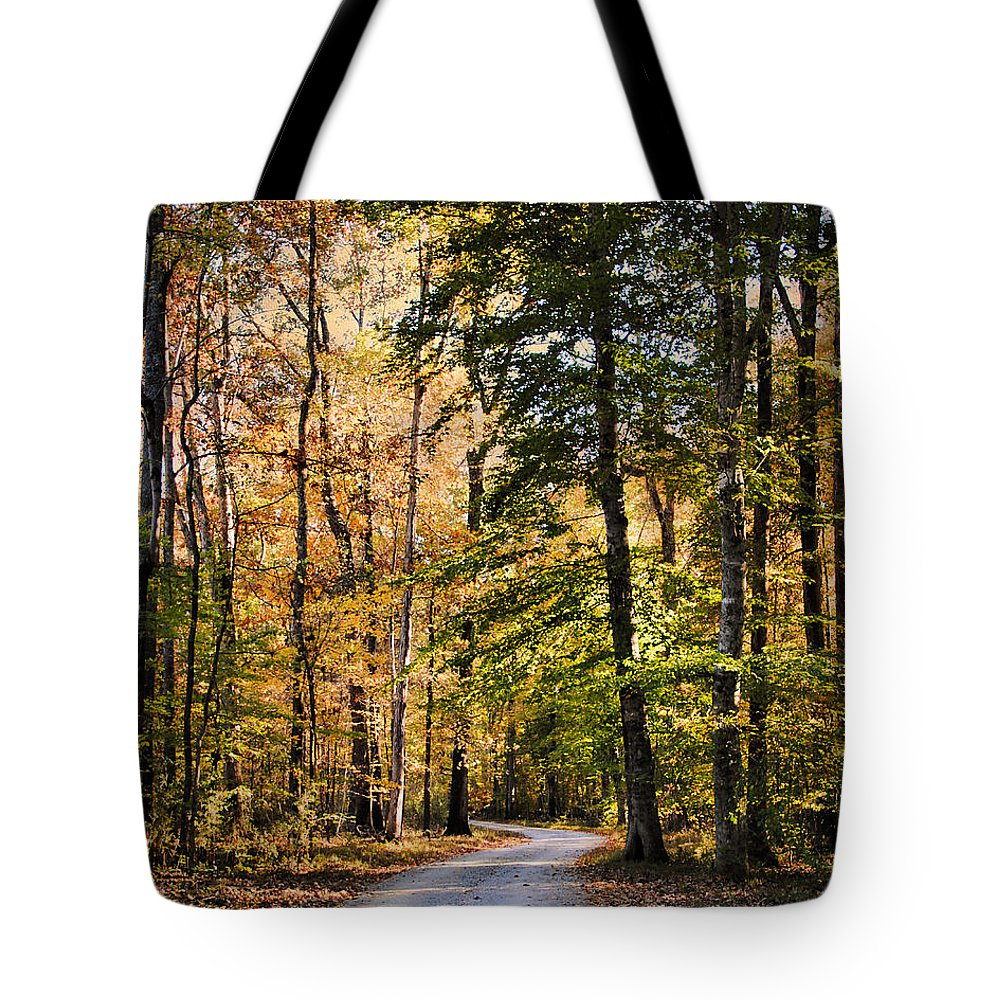 Autumn Tote Bag featuring the photograph Light Your Way by Jai Johnson