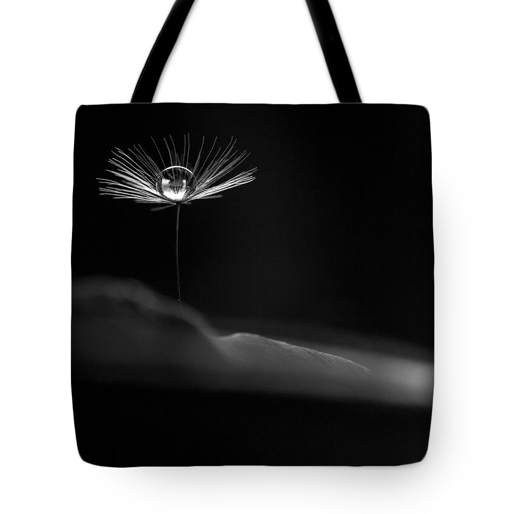 Dandelion Tote Bag featuring the photograph Lighthouse by Aaron Aldrich