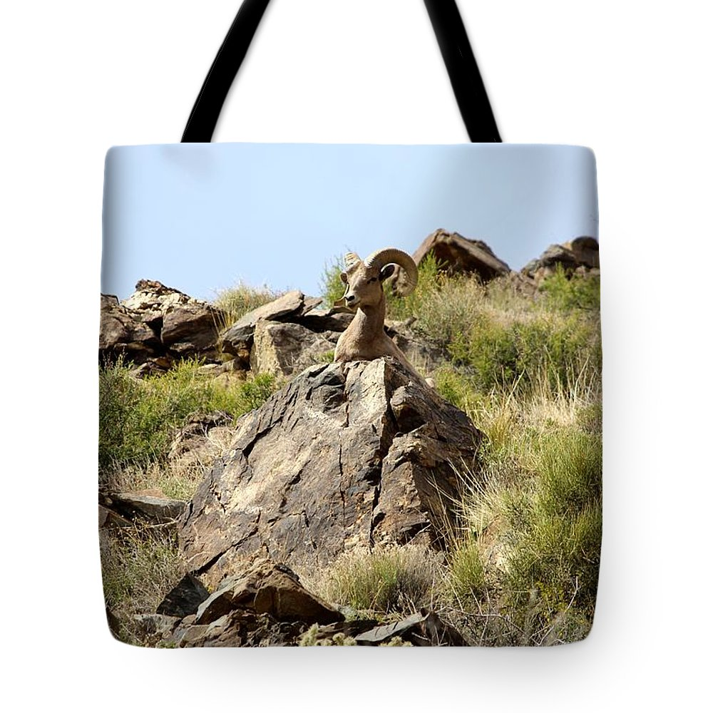 Ram Tote Bag featuring the photograph Like A Statue by Tiffany Erdman