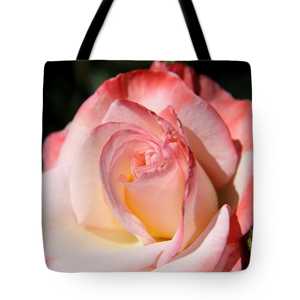 Shrub Rose Tote Bag featuring the photograph Like Sugar And Spice by Christiane Schulze Art And Photography