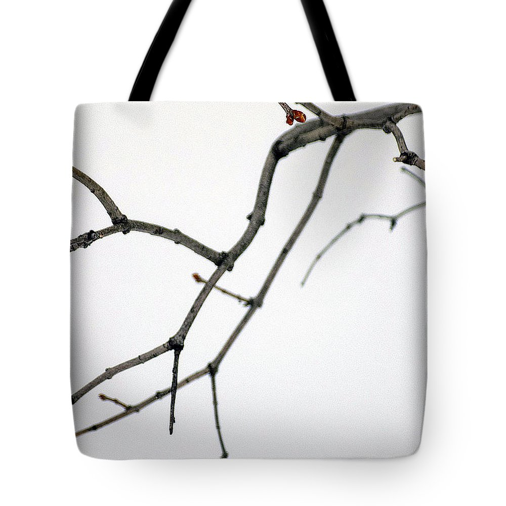 Lilacs Tote Bag featuring the photograph Lilac Branches by William Tasker