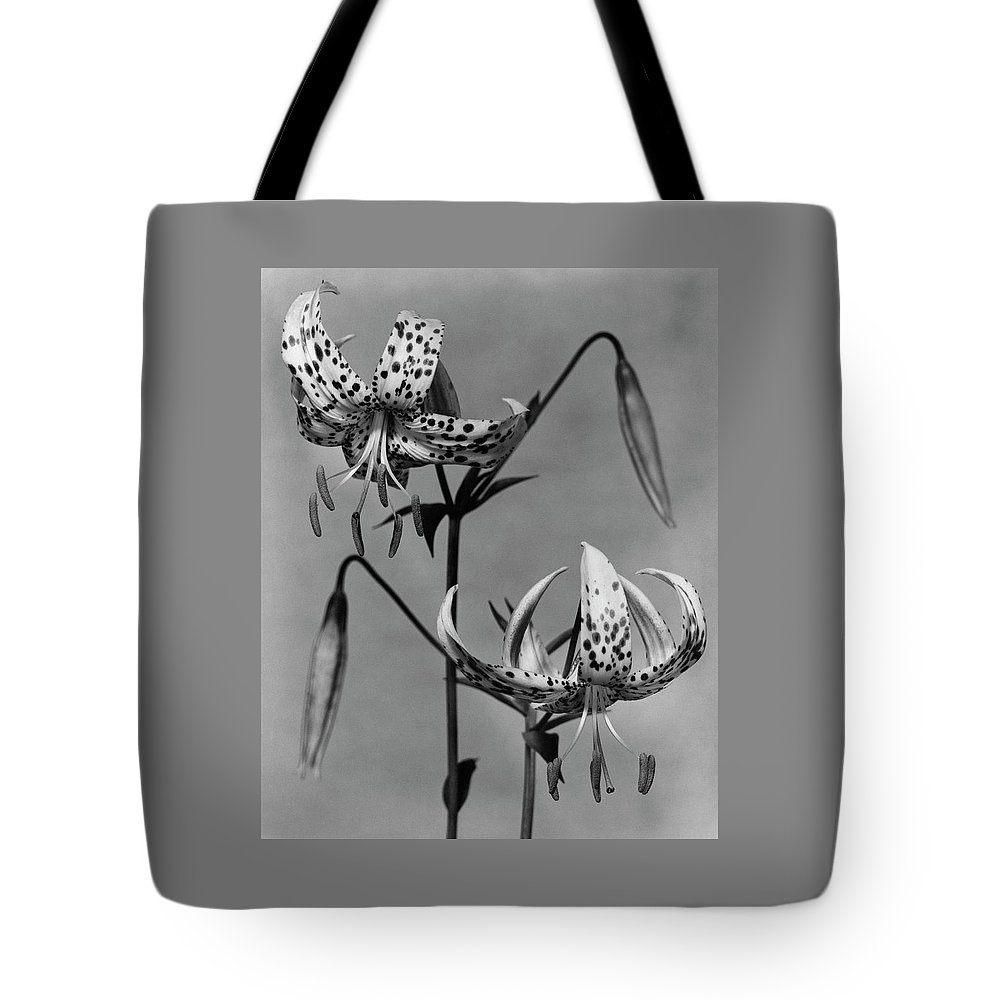 Flowers Tote Bag featuring the photograph Lilium Bellingham by Herman V. Wall