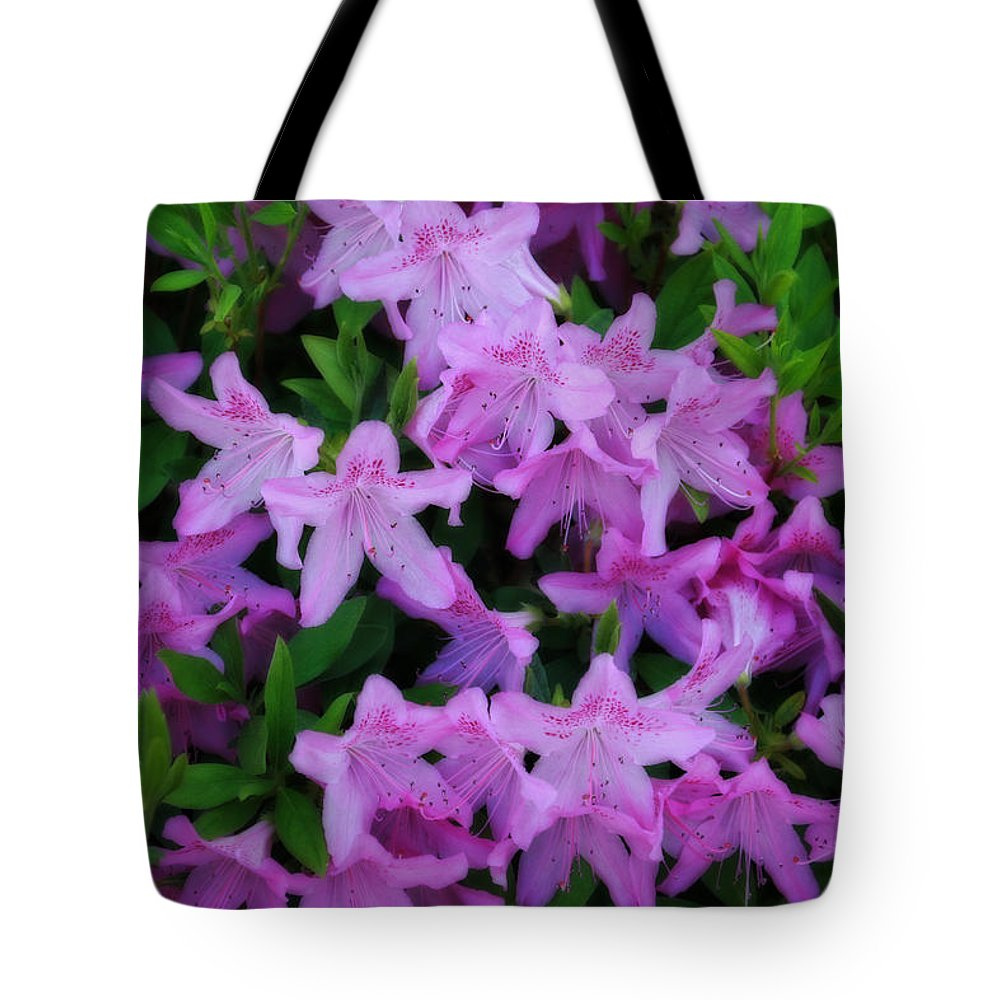 Lillies Tote Bag featuring the photograph Azaleas by CE Haynes