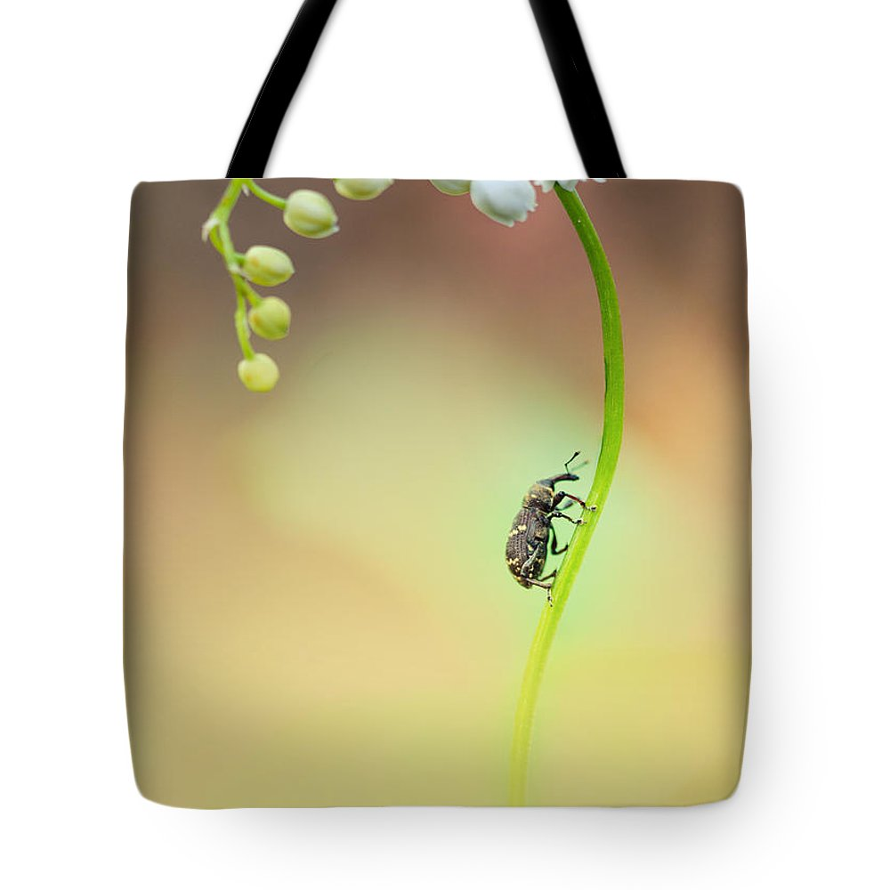 Flower Tote Bag featuring the photograph Lilly Of The Valley by Jaroslaw Blaminsky