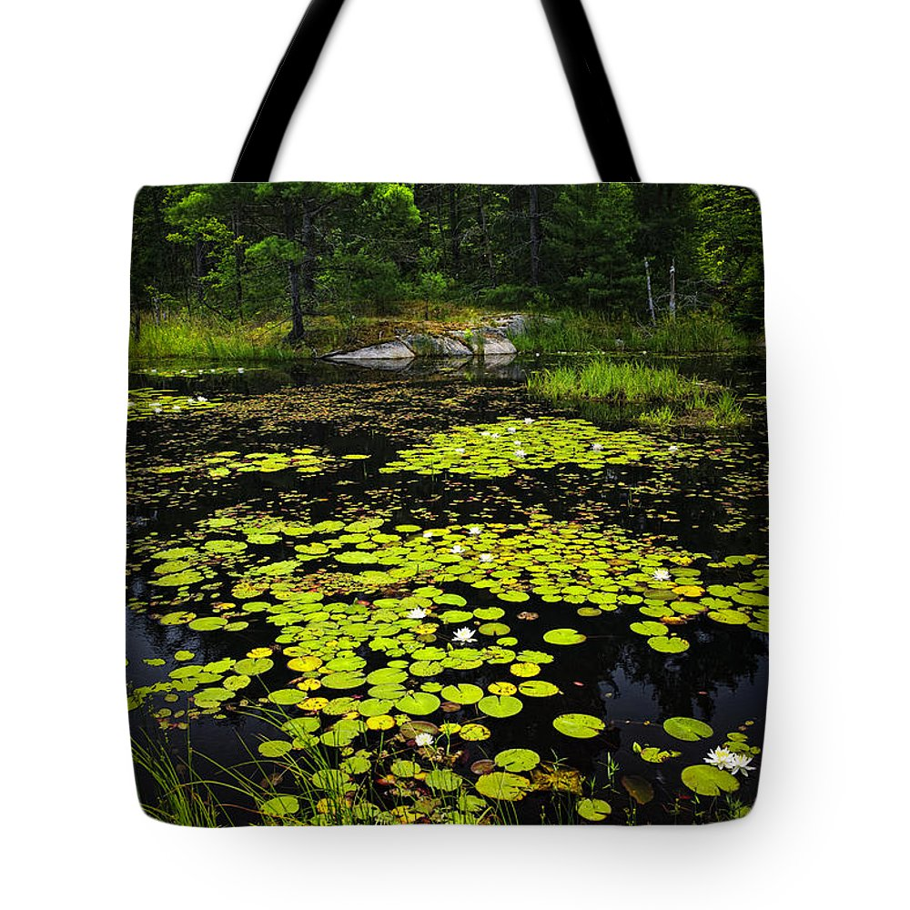 Lake Tote Bag featuring the photograph Lily Pads On Lake by Elena Elisseeva