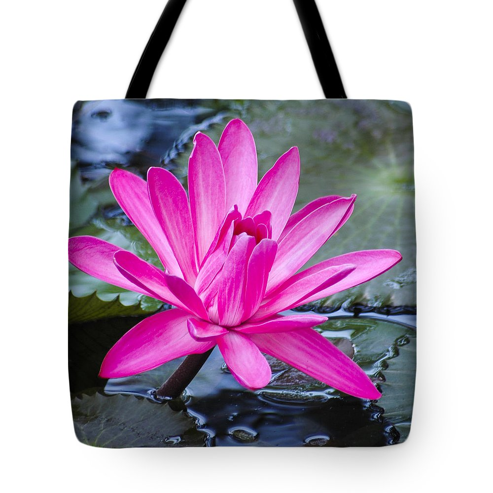 Water Lily Tote Bag featuring the photograph Lily Petals by Carolyn Marshall