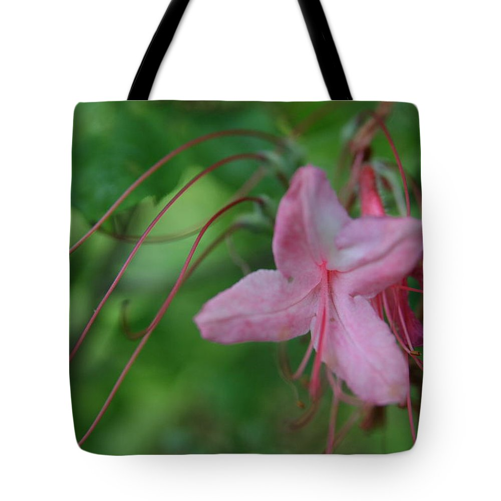 Pink Lily Tote Bag featuring the photograph Lily Slide by Neal Eslinger