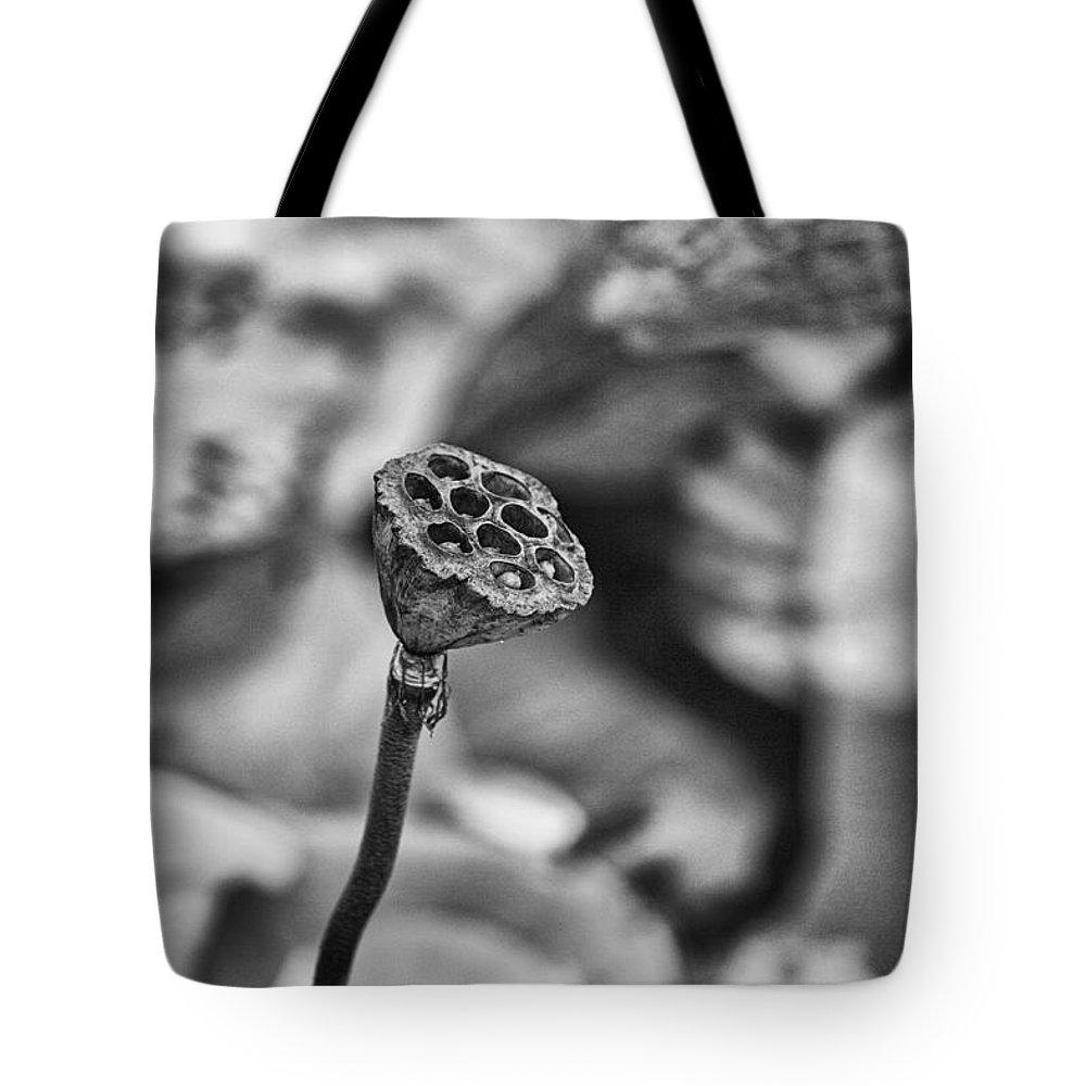 Lotus Flower Tote Bag featuring the photograph Lily Stem-gungarre Billabong by Douglas Barnard