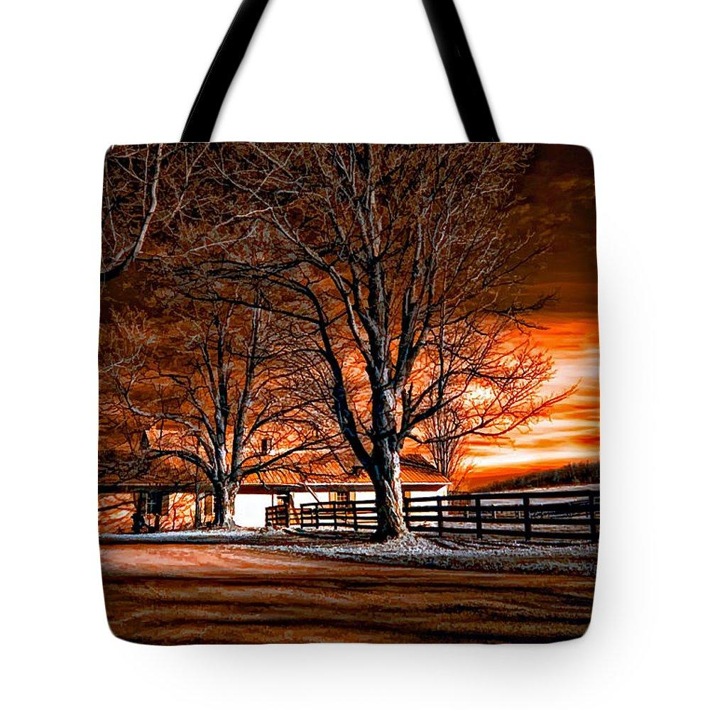 Farm Tote Bag featuring the photograph Limbo by Steve Harrington