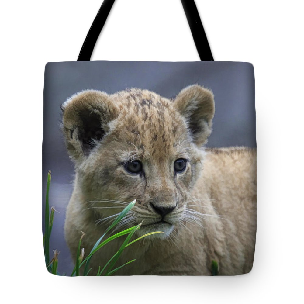 Wildlife Tote Bag featuring the photograph Lion Cub by Steve McKinzie