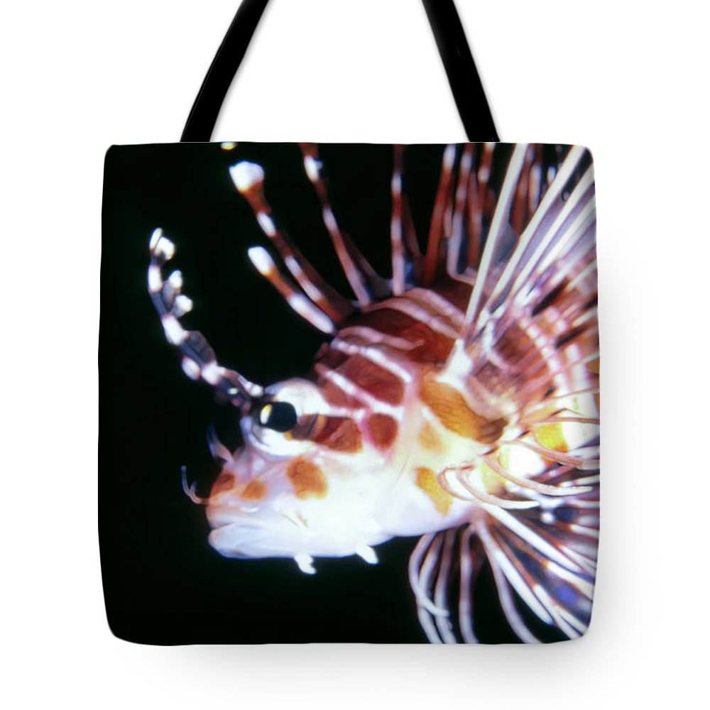 Micronesia Tote Bag featuring the photograph Lionfish 3 by Dawn Eshelman