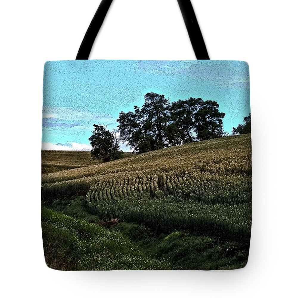 Lions Tote Bag featuring the photograph Lions Watch by Steve McKinzie