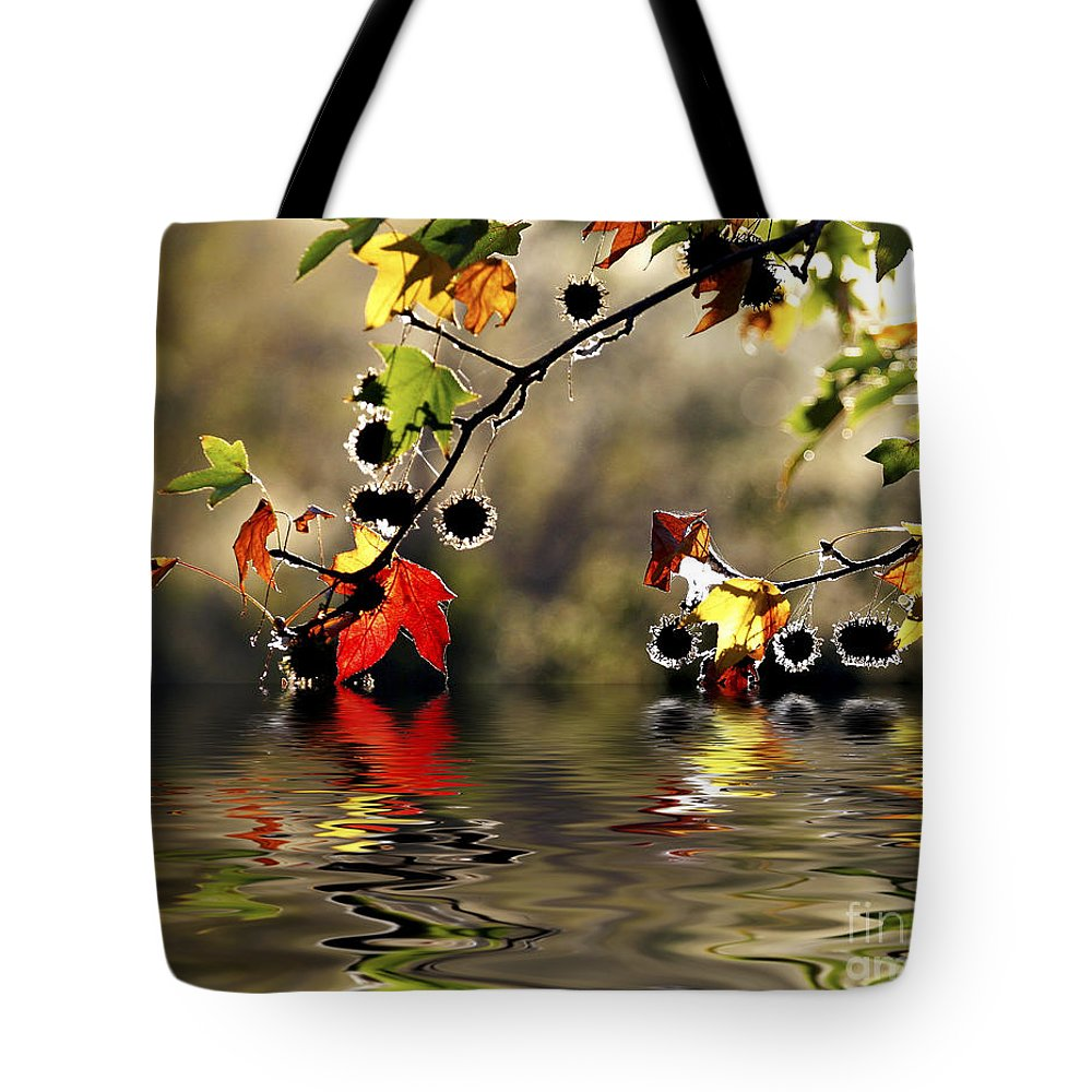 Liquidambar Maple Autumn Fall Flood Water Reflection Tote Bag featuring the photograph Liquidambar In Flood by Sheila Smart Fine Art Photography