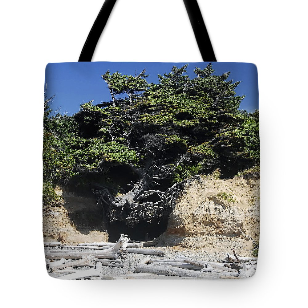 Den Of The Coastal Bigfoot Tote Bag featuring the photograph Den Of The Coastal Bigfoot by David Lee Thompson