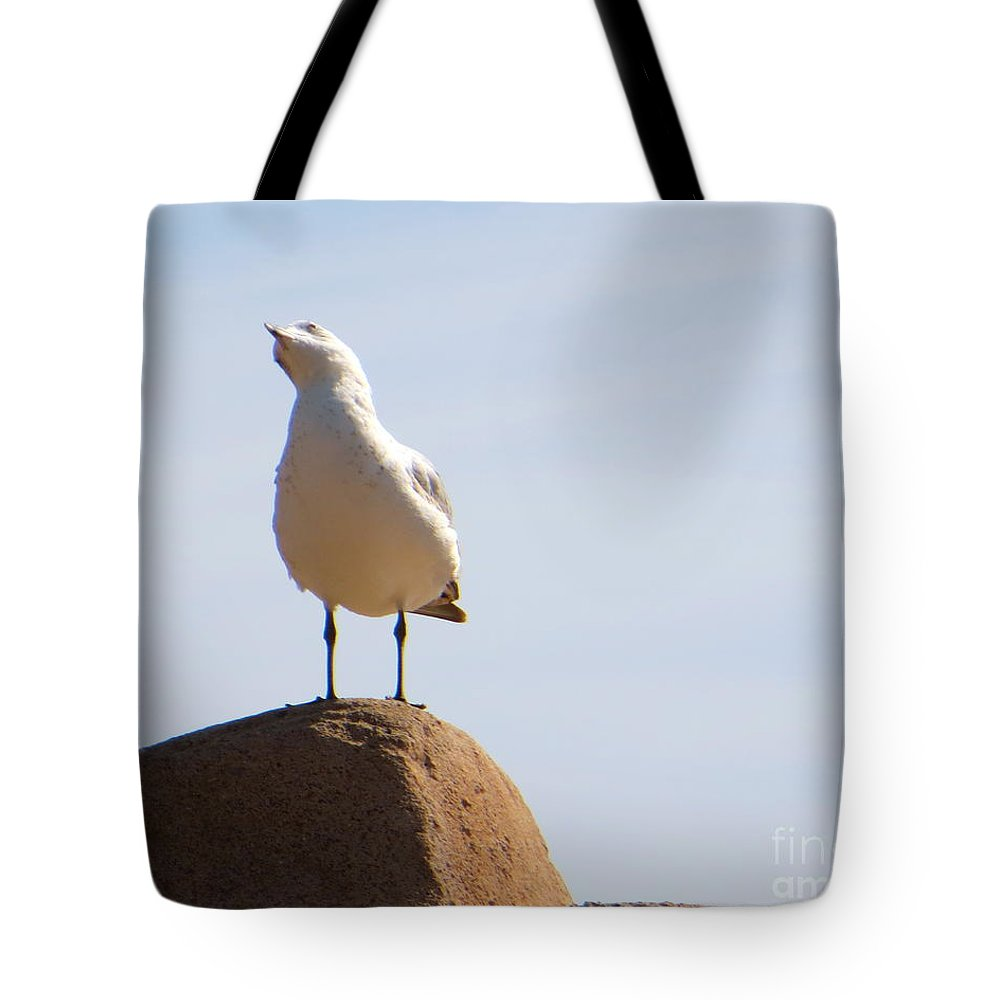Seagull Tote Bag featuring the photograph Listen-up by Joy Hardee