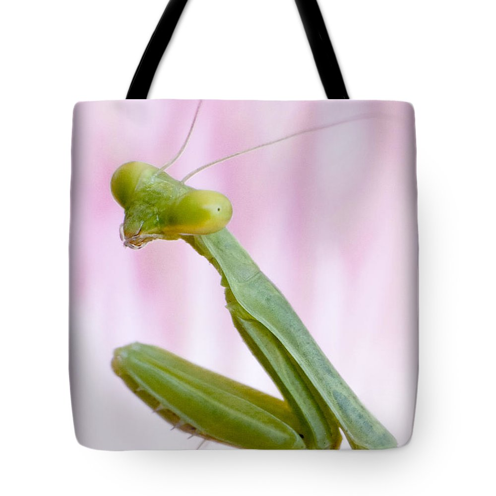 Bug Tote Bag featuring the photograph Listening by David and Carol Kelly
