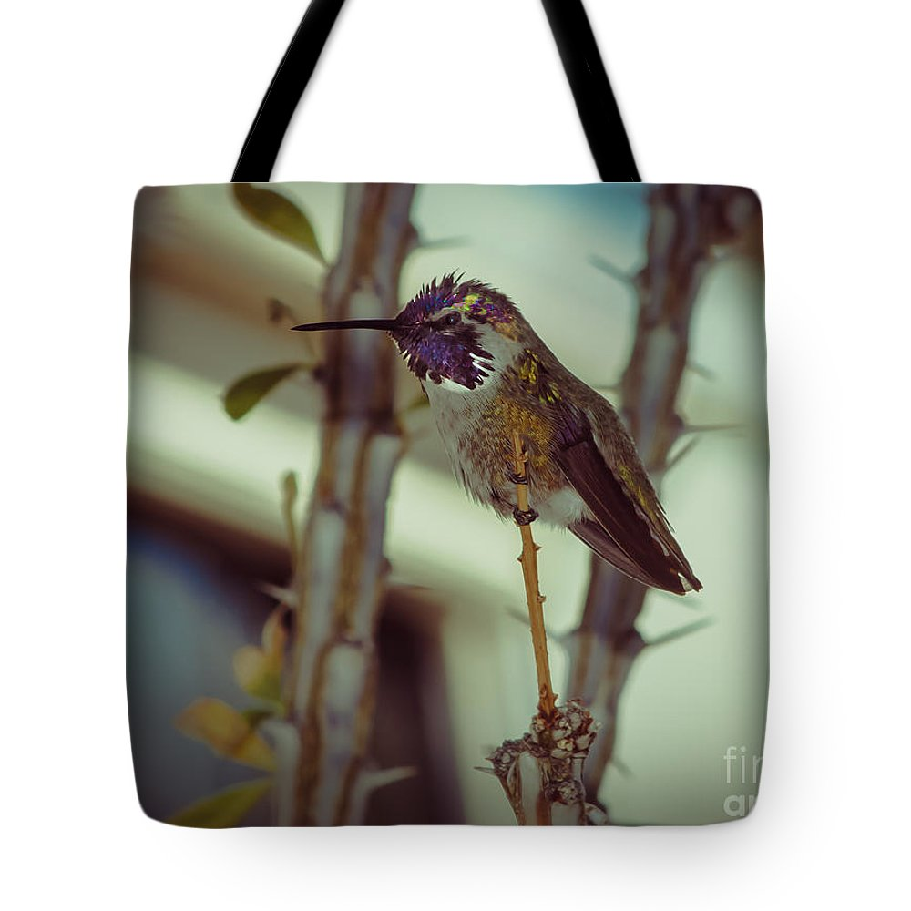 Birds Tote Bag featuring the photograph Little Costa's Hummingbird by Robert Bales