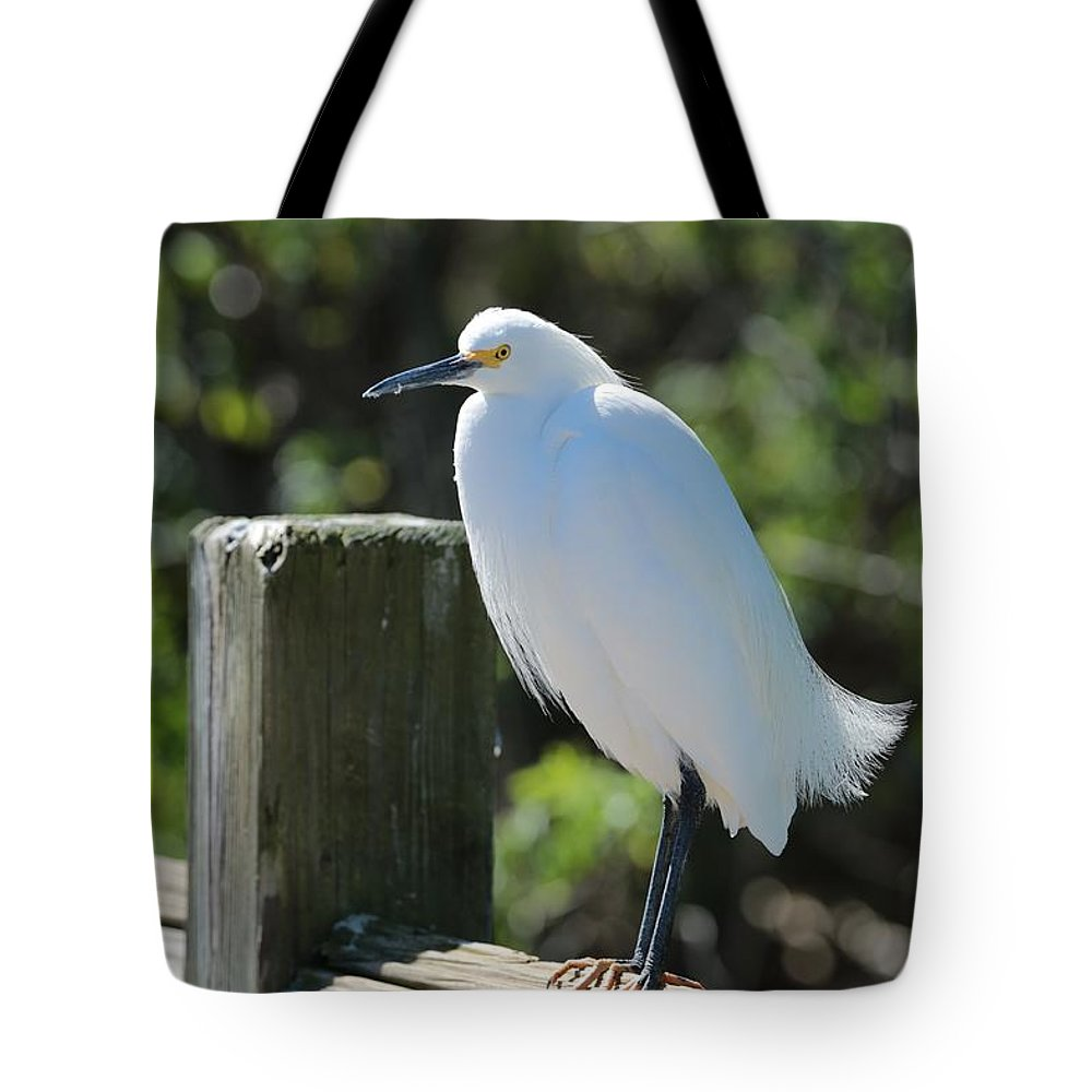 Egret Tote Bag featuring the photograph Little Egret On The Boardwalk by Carol Groenen