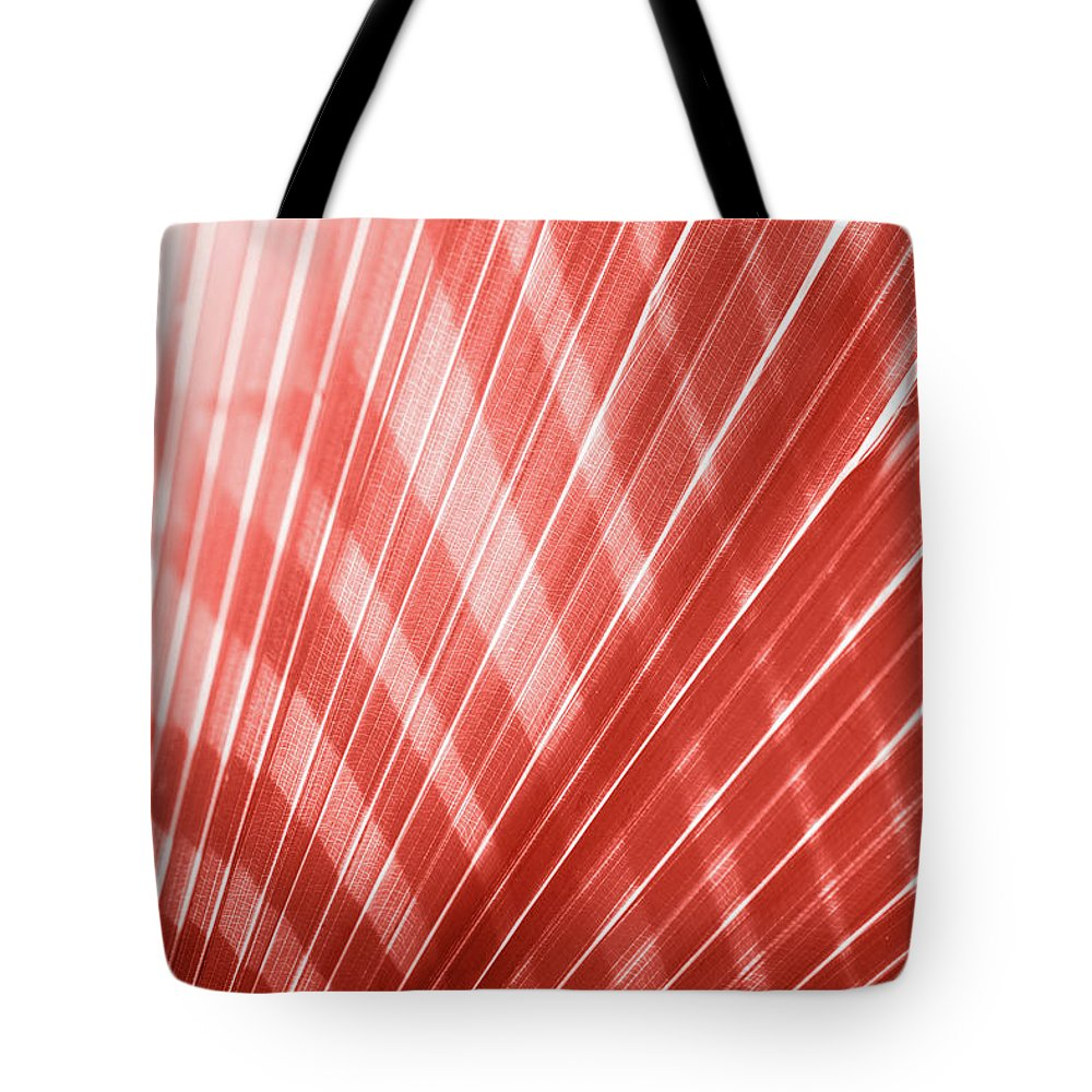 Orange Color Tote Bag featuring the photograph Living Coral Color Of The Year 2019 by Efetova