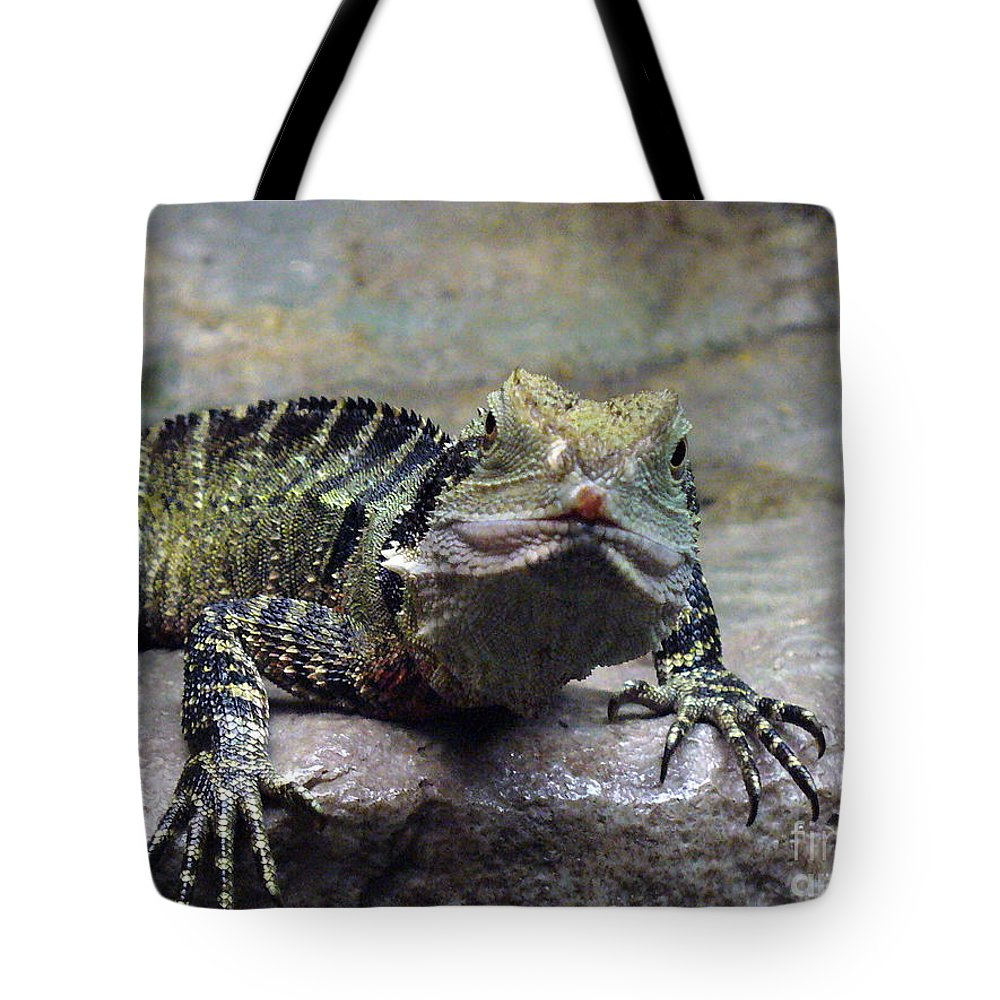 Reptiles Tote Bag featuring the photograph Lizzie's Gaze by Lingfai Leung