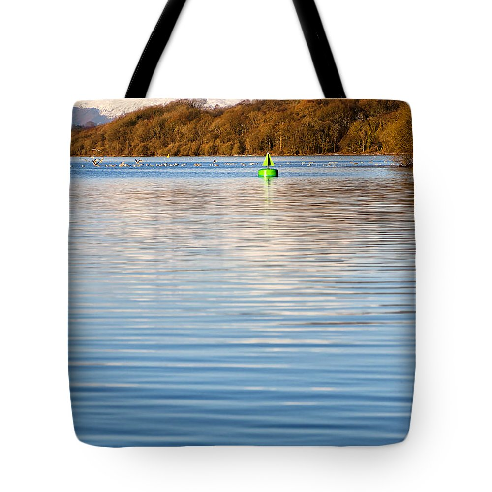 Balloch Tote Bag featuring the photograph Loch Lomond Portrait by Antony McAulay
