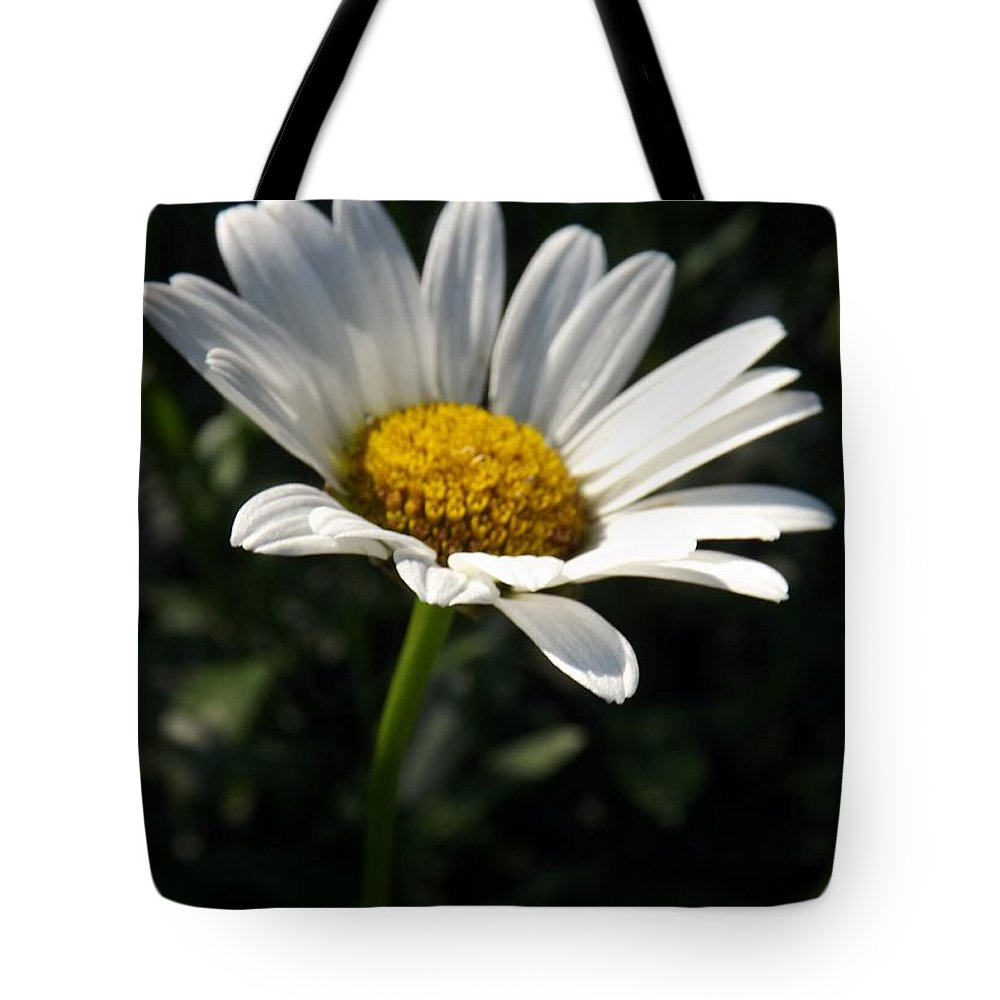 Flower Tote Bag featuring the photograph Lone Daisy by Sara Raber