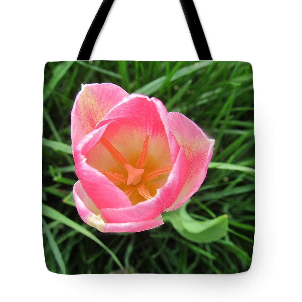 Tulip Tote Bag featuring the photograph Lone Pink Tulip by Tina M Wenger