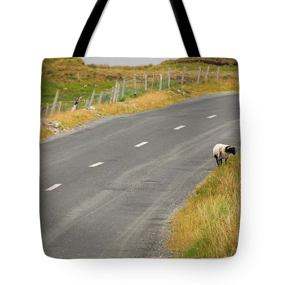 Sheep Tote Bag featuring the photograph Lone Sheep by Mary Carol Story