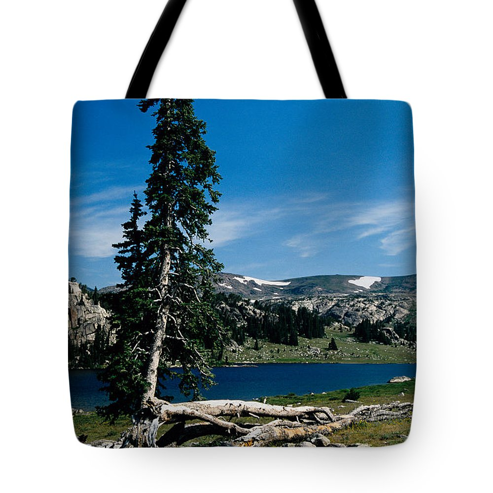 Mountains Tote Bag featuring the photograph Lone Tree At Pass by Kathy McClure