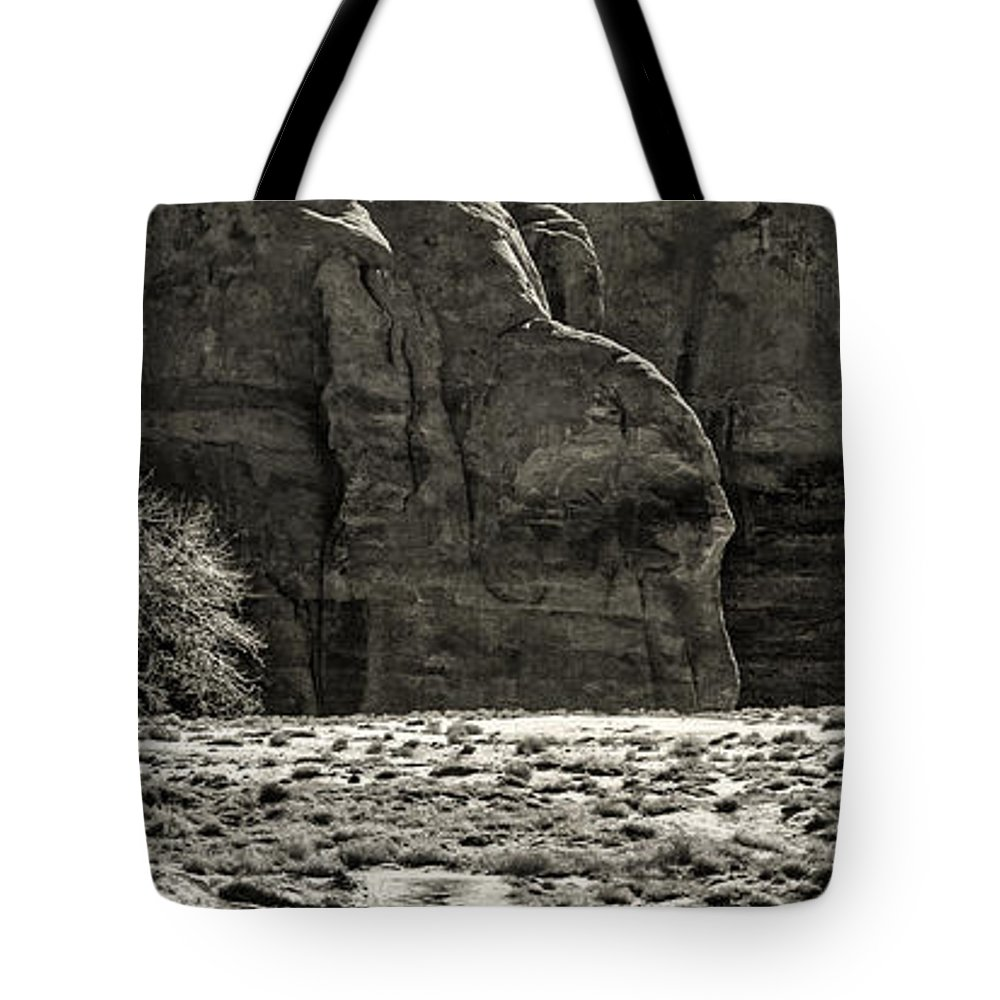 Tote Bag featuring the photograph Lone Tree II by Paul Bartell