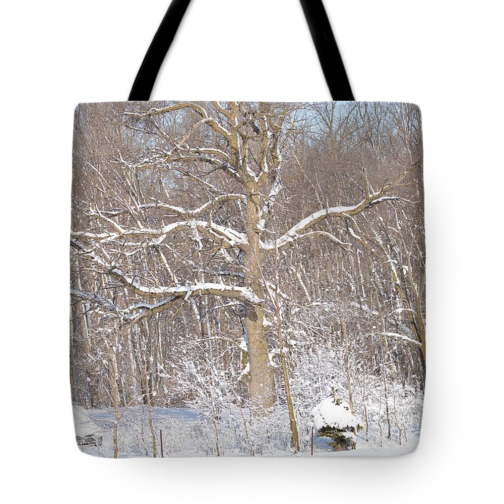 Nature Tote Bag featuring the photograph Loney Ash by Dacia Doroff