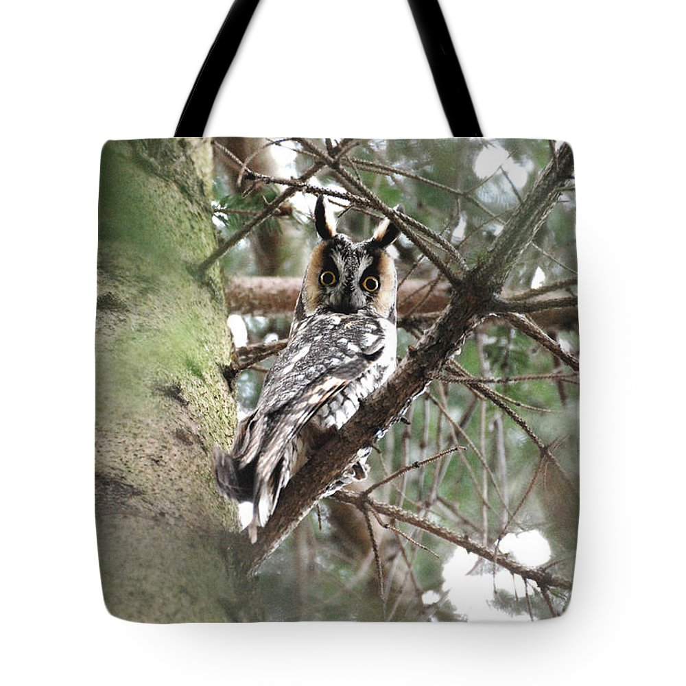 Long Eared Owl Tote Bag featuring the photograph Long Eared Owl At Attention by Tracy Winter