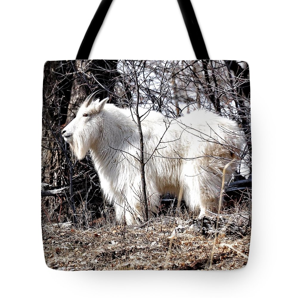 Alpine Tote Bag featuring the photograph Looking At You by Image Takers Photography LLC - Laura Morgan