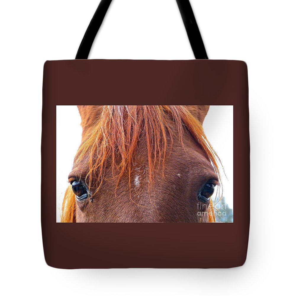 Horse Tote Bag featuring the photograph Looking At You by Vi Brown