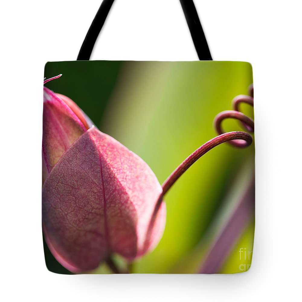 Flower Tote Bag featuring the photograph Looking Into A Pink Bud by Michelle Constantine