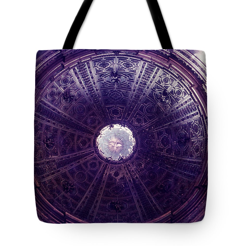 Looking Up Tote Bag featuring the photograph Looking Up Sienna by David Hohmann